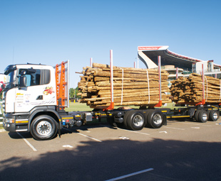 Logmaster leads the way