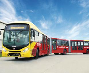 Buses aplenty