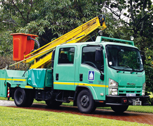 A cherry picker mounted on an Isuzu NMR 250 Crew Cab for ease of carrying crew.