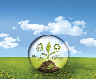 Have you gone environMENTAL?