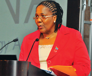Dipuo Peters has been appointed as minister of transport, replacing Ben Martins.