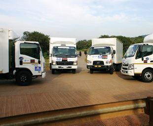 Head to head: unfortunately a mere four vehicle brands were able to enter Truck Test 2014.