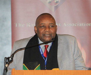 Mvikeli Ngcamu, integrated transport chief director at the Department of Transport, addressed delegates after the department's acting director general failed to arrive.
