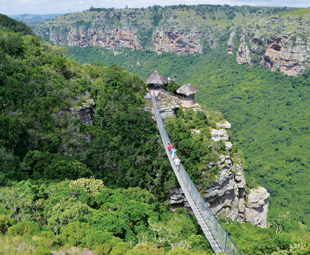 Crossing the suspension bridge gives full access to the Oribi Gorge's tree-lined magnificence.