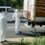 Truck, decomposing bodies found