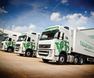 Extracting maximum value for telematics data can increase the efficiency of a fleet.