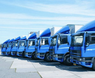 Improve your fleet management skills!