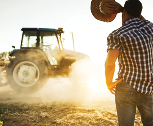 Farmers to have a field day