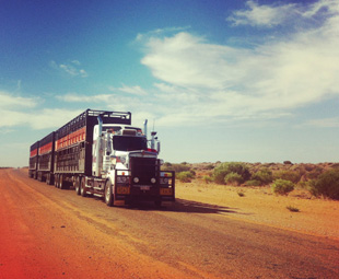 Up to 200 t, 53,5 m and six trailers: Australian road trains are not for the faint of heart.