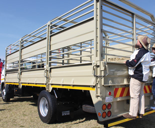 The 500 cattle truck attracted much interest.