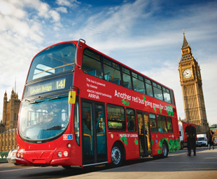 Green buses gaining ground